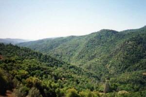 Mount Sizer