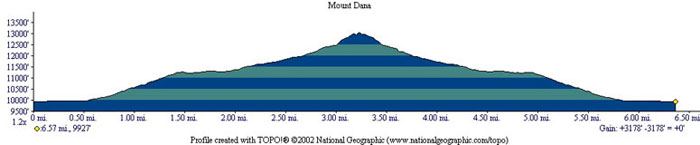 Mount Dana Profile